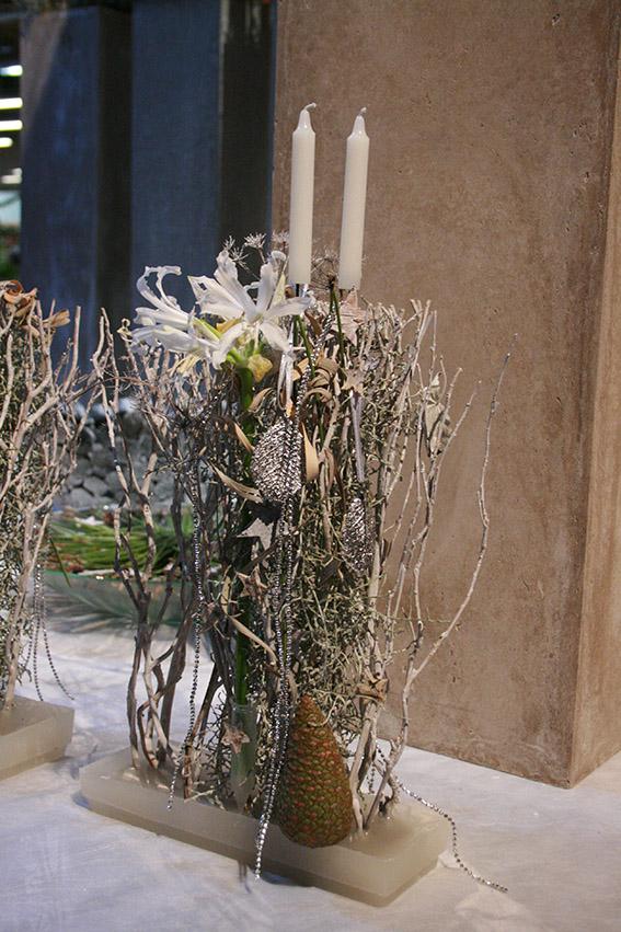 Blooms Schlieren 2012 065